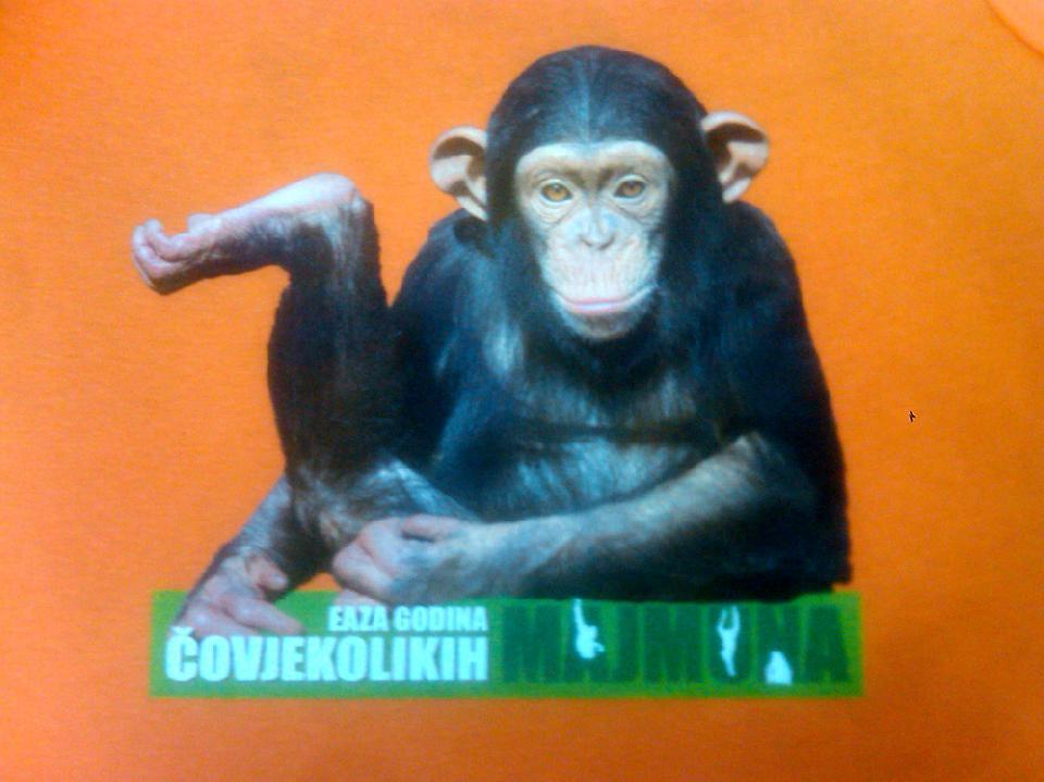 Godina čovjekolikih majmuna narančasta majica