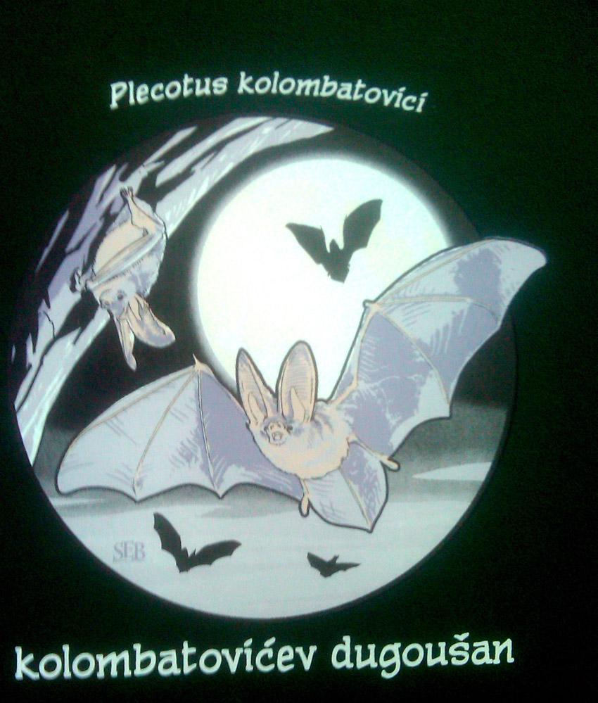 Kolombatovićev dugoušan - tisak na crnoj majici
